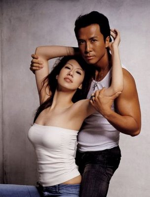An EPIC Tribute to the Greatness that is Donnie Yen (2/6)